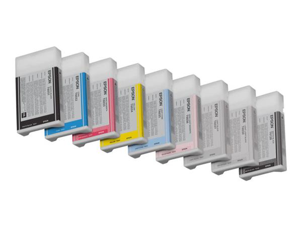 Epson Stylus Pro 9880 Light Light Black Ink Cartridge