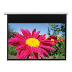 Optoma EGA series DE-1095EGA Projection Screen - 95 in ( 241 cm )